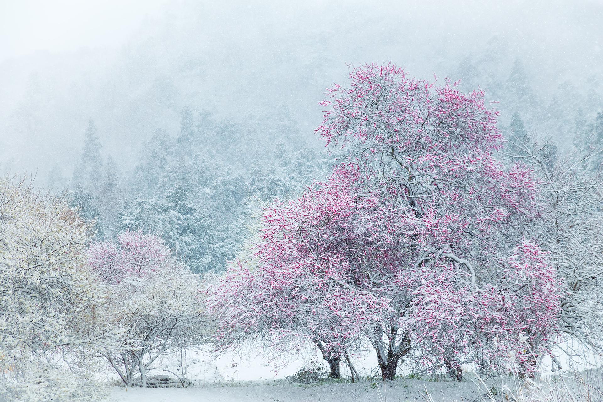 photographer Masahiro Hiroike